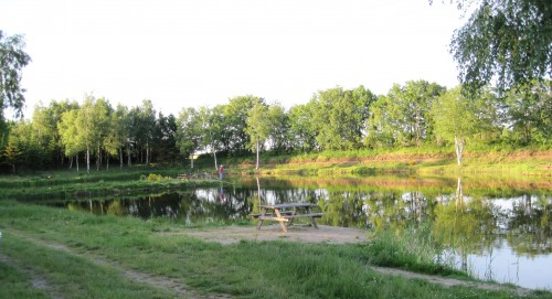 The small lake in Skellerup